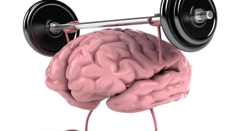 Способы держать мозг в тонусе